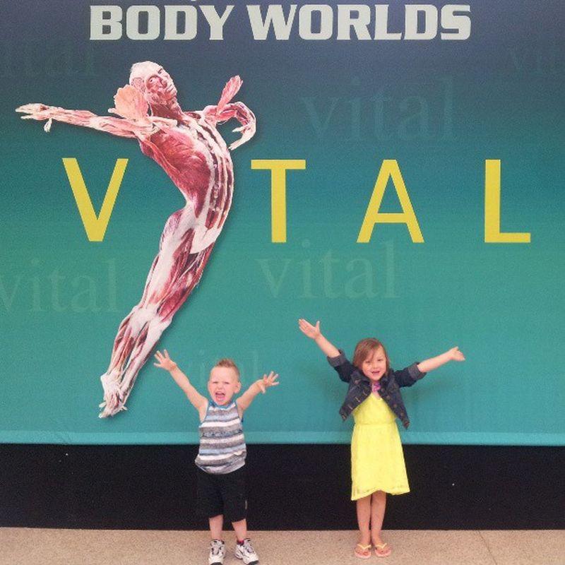 At Bodyworlds