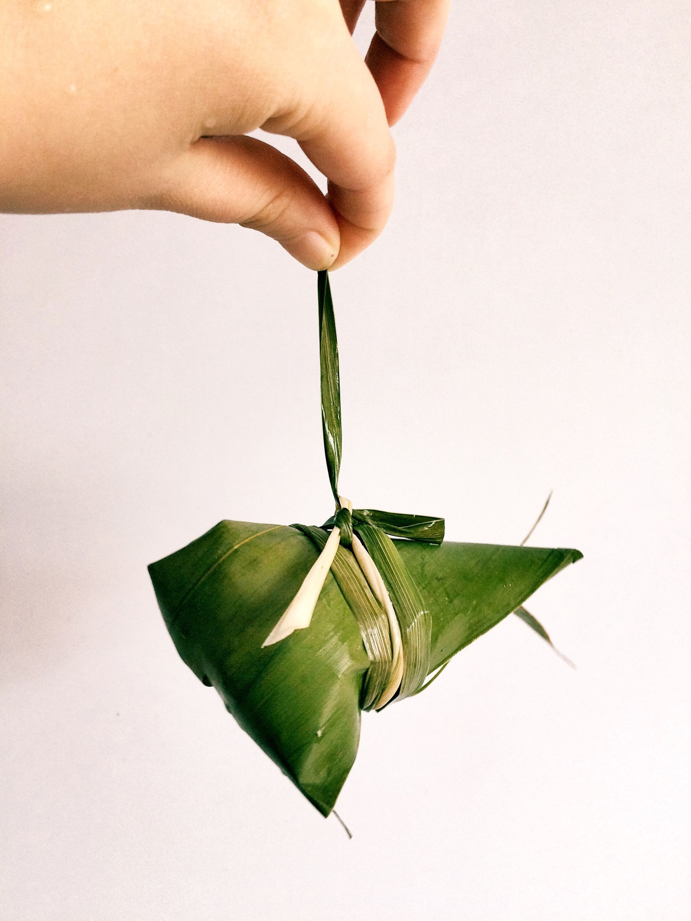 person, holding, green color, studio shot, white background, leaf, copy space, lifestyles, close-up, human finger, part of, childhood, leisure activity, cropped, unrecognizable person, showing, indoors