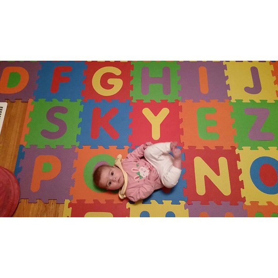 skyes new bedroom floor tiles say skye 😊 Skye Bedroom Newfloor Shelovesit cutie mybaby