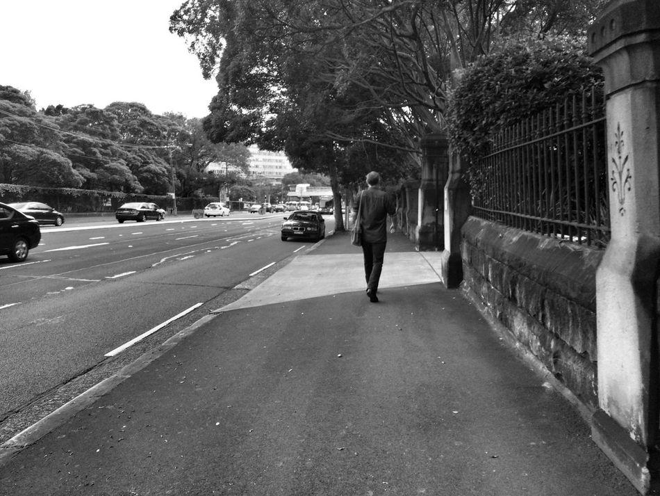 A morning walk Shadows & Lights Monochrome