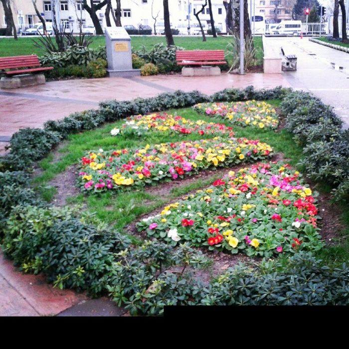 Flowertown Flowercity Flower Yalova Travel Turkey Türkiye Istanbul Instagram Insta Love Life Enjoy