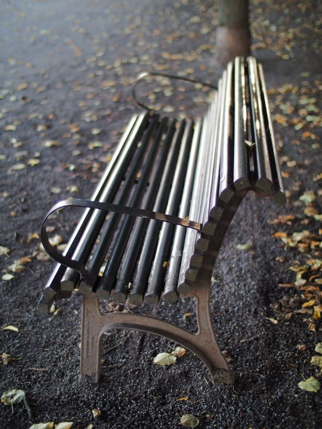 Park bench Park Bench Park Benches Parkbench Parkbenches Streetphotography Shallow Depth Of Field Selective Focus Street Walk Walking Around The City  Walking Home