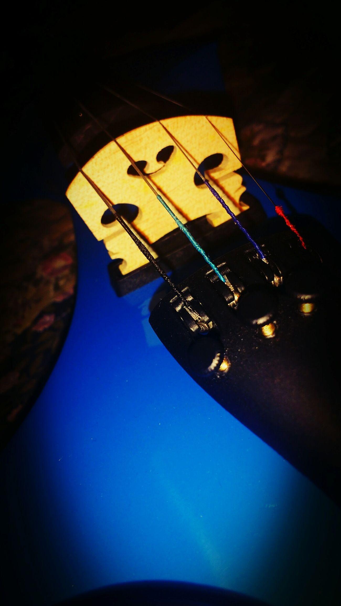 Violin String Instrument Cuerdas Photos Of Violin