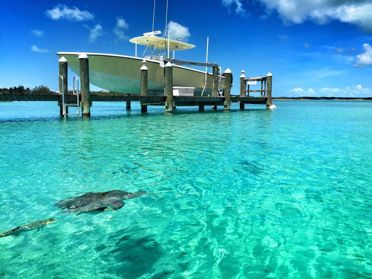 Beautiful stock photos of bahamas, water, blue, sea, waterfront