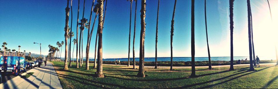 Enjoying The Sun Sunshine Enjoying The Sights Paradise
