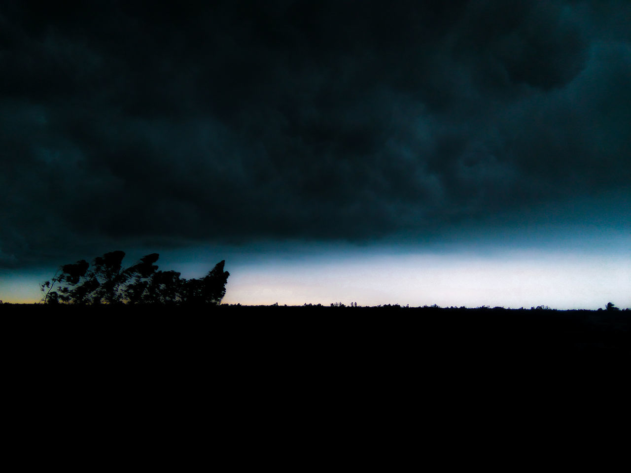 Tree Dark Nature Landscape No People Astronomy Sky Outdoors Tree Area Scenics Beauty In Nature Day Storm Mobile Photography Thunderstorm Rain Cloud Silhouette Night Star - Space
