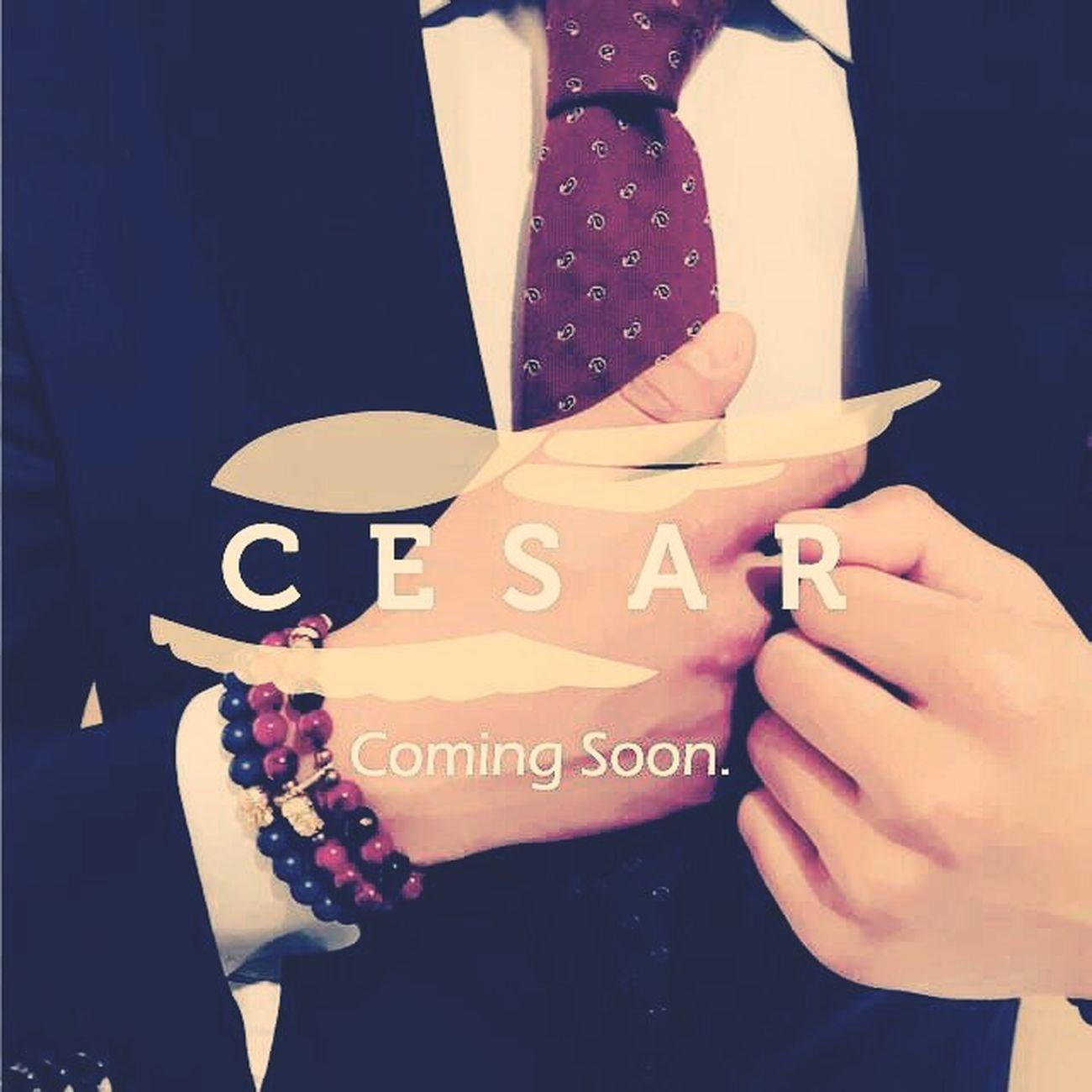 Cesar bracelets. More soon! Fashion Bracelet Belgium Handmade Bracelet Braceletsformen Feather  Cesar