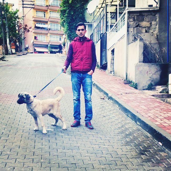 Cheese! Hi! Hello World Good Taking Photos Dog Sivas Kangalı Dostum Cesur