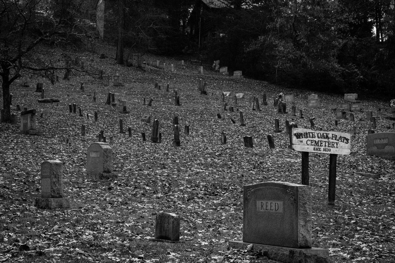 Cemetery Tombstone Memorial Grave Graveyard Outdoors Text Tree No People Day Nature Grief Gatlinburg Tennessee Gatlinburg Black And White Black & White W Tennessee