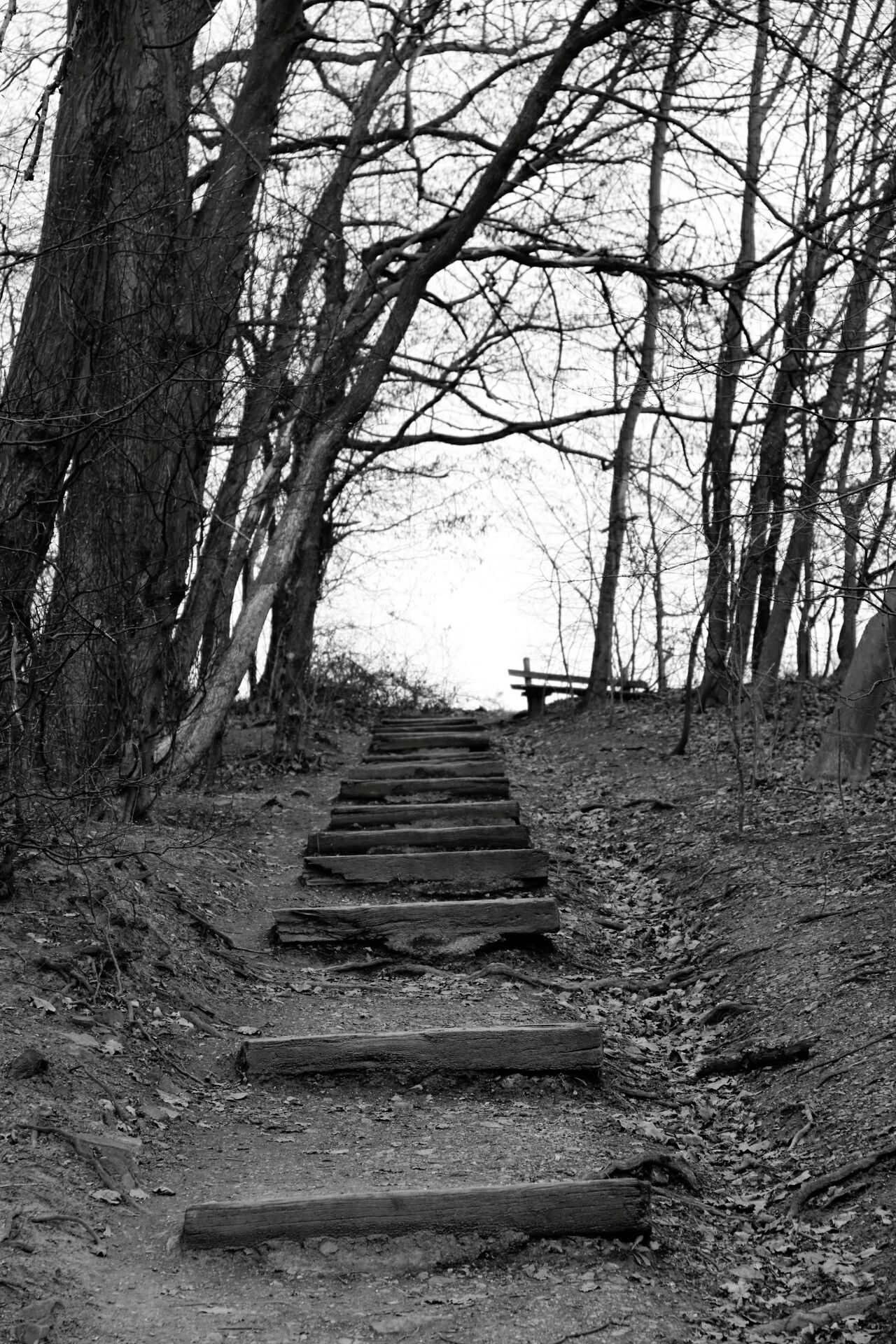 Blackandwhite Photography Germany 0711 Photography Landscape_photography Stair