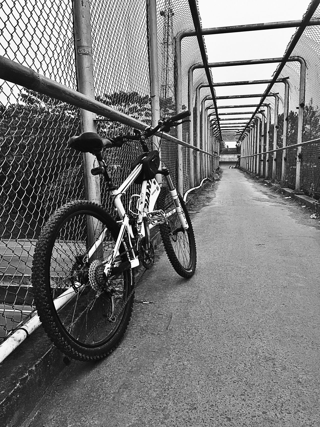 Weekend biker Bicycle From My Point Of View Fantastic Exhibition Indonesia_photography Sports Photography Bikeporn Bikephotography Bikephotographer Cyclists In Landscape Black And White Blacknwhite_perfection Bnwphotography Bnw_collection
