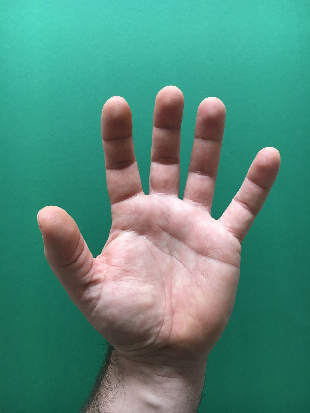 Human Hand Human Body Part Studio Shot Close-up One Person Palm Indoors  Day Hand Handsome Handmade Hands
