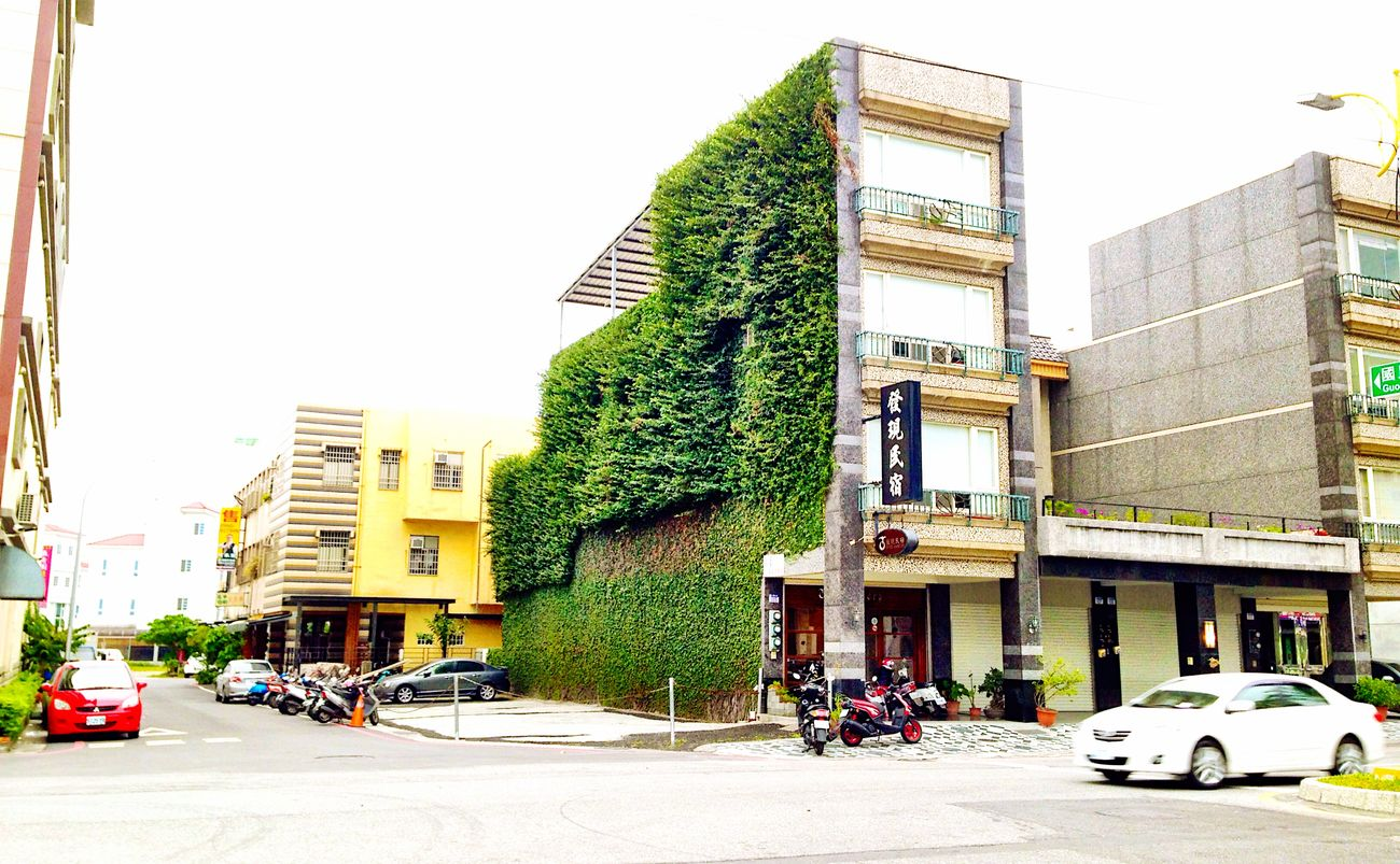 花蓮一家民宿 Bed And Breakfasts Wall Planticola