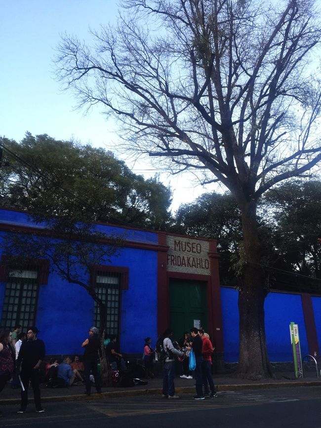 The Tourist outside of a museum in Mexico City Mexico City Fridakahlo Kahlo Museum People Lines Bluehouse Casaazul Trees Winter Blue Beautiful Follow4follow Followforfollow Hello World Enjoying Life Urban Landscape Amazing View Taking Photos Showcase: February Colors Blue Wave
