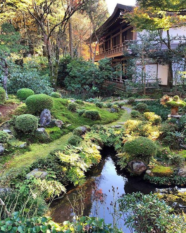 Sanzen-in Shrine in Ohara, Kyoto , Japan ✨✨✨Have a great Sunday !!! ✨✨✨ Garden Autumn Awesome_japan All_shots Landscape Landscape_lovers Landscape_captures Landscapestyles_gf Landscapes Hdr_pics VSCO Phototag_it Photooftheday Master_pics Master_shot Ig_sharepoint Ig_world Igs_today Instagood Instamood Globalcapture Insta_worldz Travel Holiday Nature naturelover rsa_nature jp_views hdr instagram