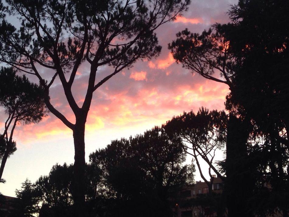 Tramonto Sun Italy Roma Rome Sunset