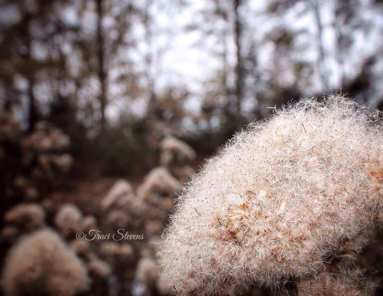 EyeEm Best Shots - Nature EyeEm Nature Lover EyeEm Best Edits