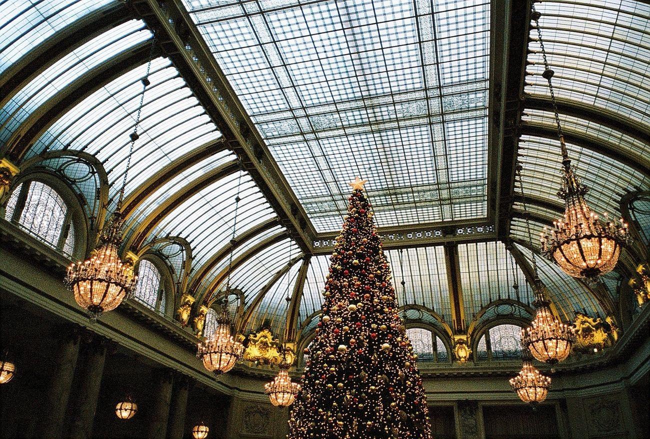Xmas Tree Chandelier Fancy Skylight
