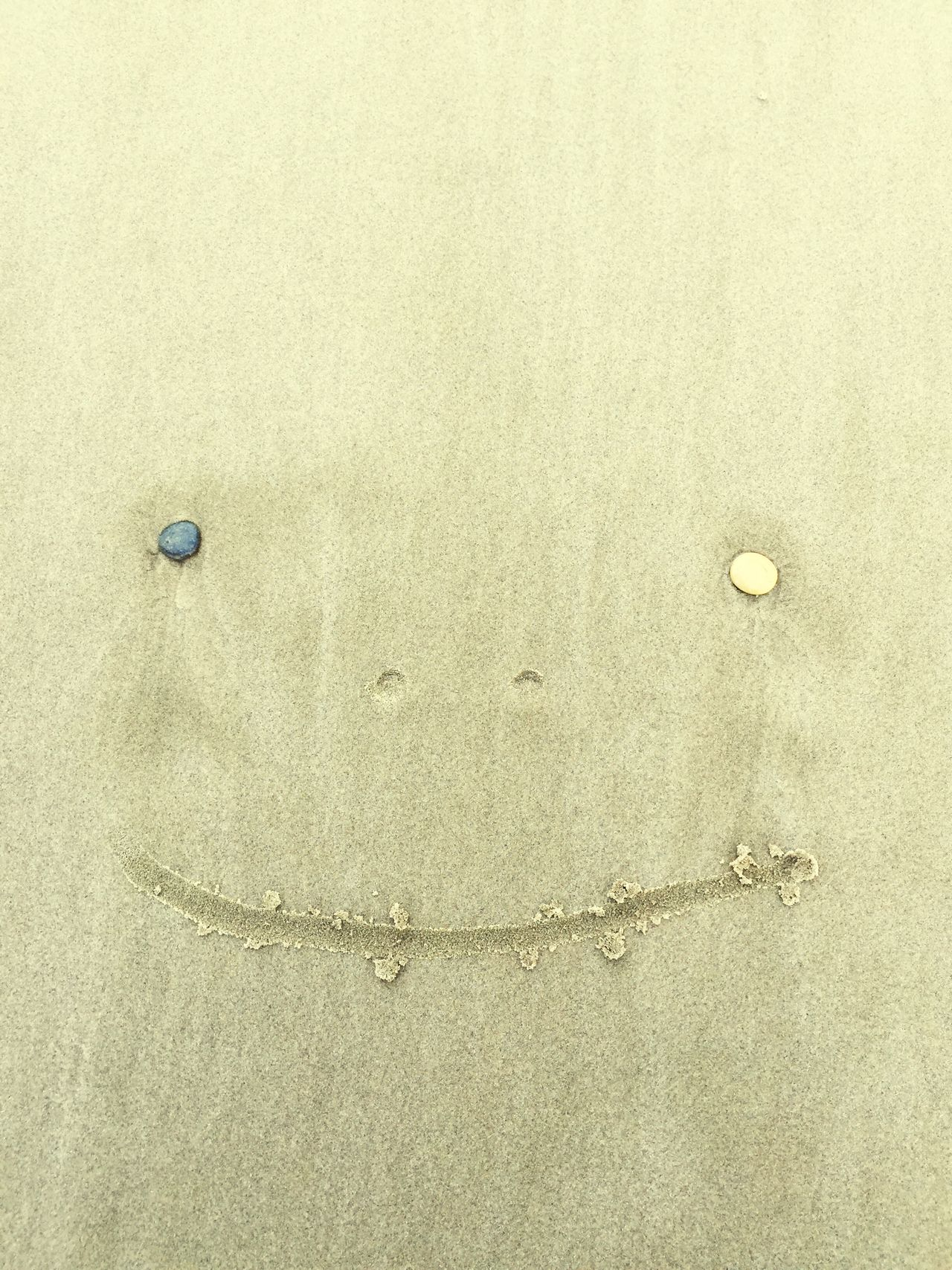 silly billy Pebble Portrait At The Beach