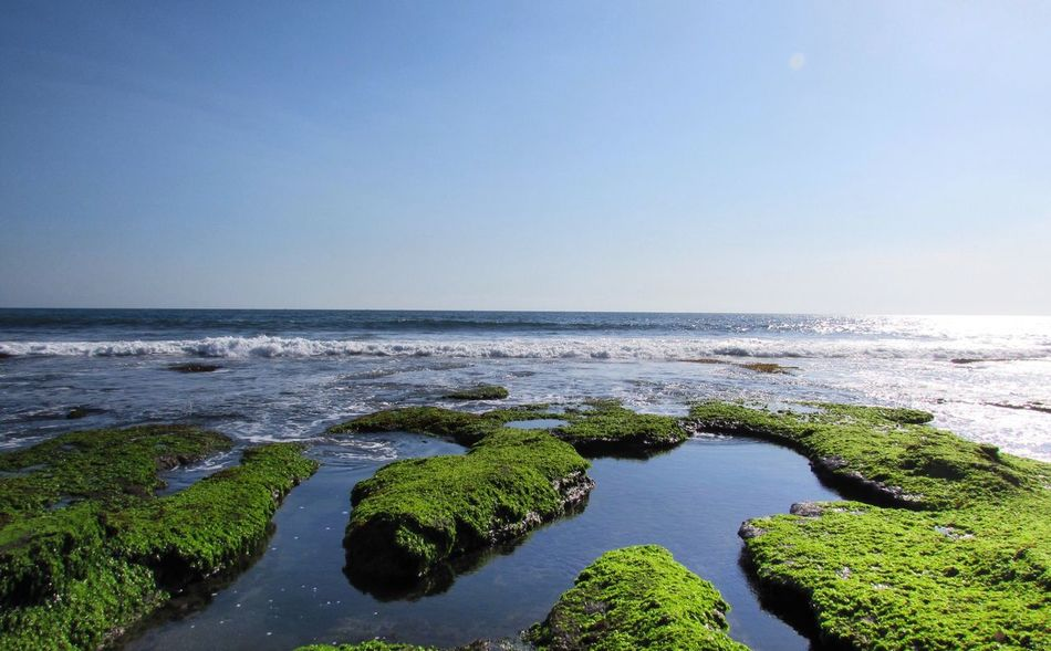 Bali, you're beautiful! Sea Horizon Over Water Water Clear Sky Copy Space Nature Scenics Beach Beauty In Nature Sky Blue Tranquility Tranquil Scene Outdoors No People Day Tanah Lot Tanah Lot Bali, Indonesia EyeEmNewHere