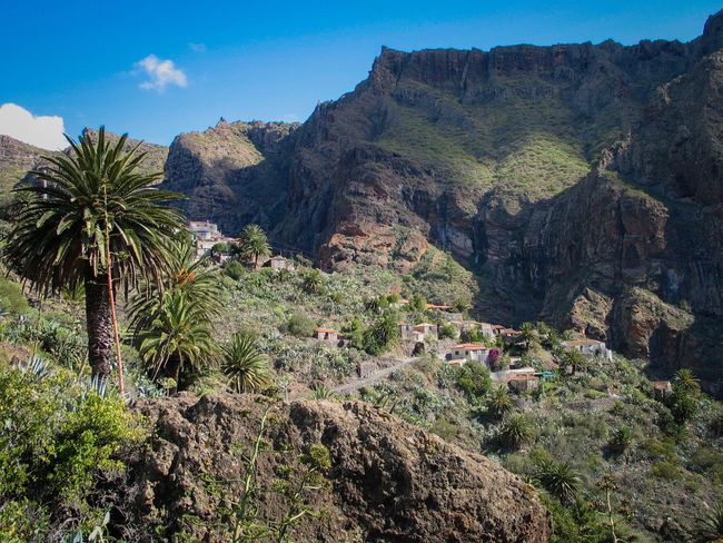 Tranquil Scene Scenics Mountain Tranquility Beauty In Nature Non-urban Scene Landscape Rock - Object Nature Tenerife Island Teneriffa Tenerife Remote Plant Rock Formation Rocky Solitude Sky Geology Growth Mountain Range Countryside