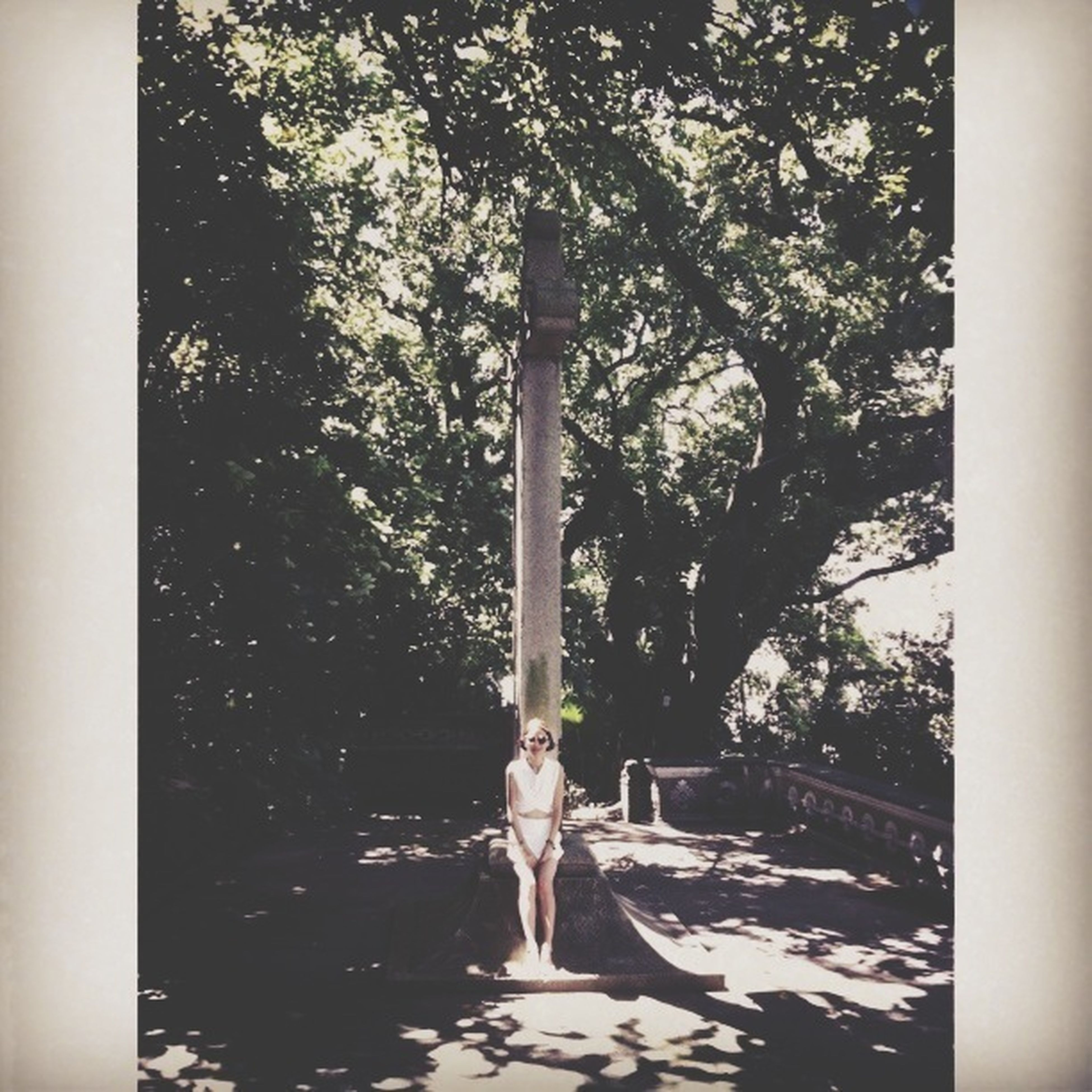 tree, transfer print, auto post production filter, tree trunk, day, outdoors, branch, growth, street light, nature, built structure, lighting equipment, full length, architecture, park - man made space, sunlight, pole