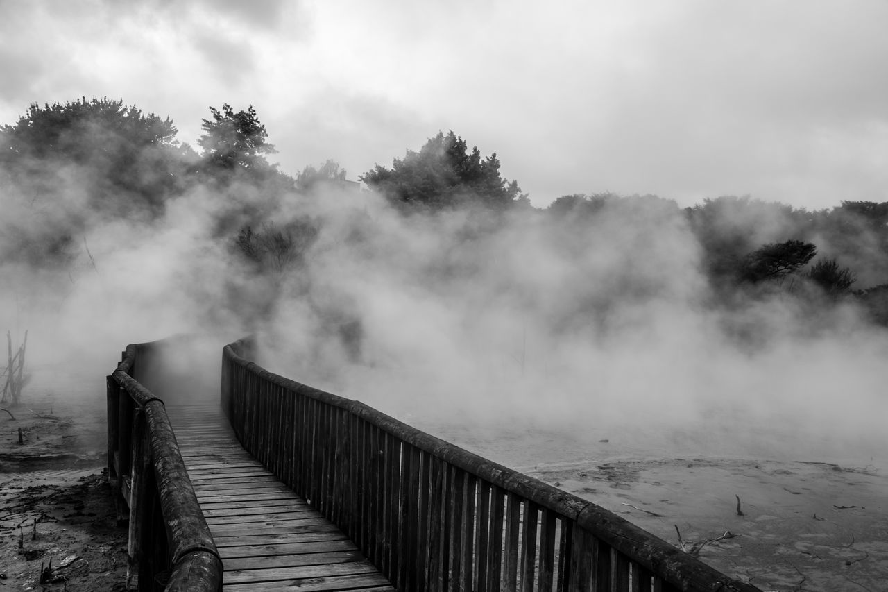 Kuirau park volcanic lakes Beauty In Nature Boiling Water Bridge Desaturated Desaturation Fog Hot Lake Nature Nature Nature Photography New Zealand New Zealand Scenery Outdoors Rotorua  Sky Smoke - Physical Structure Steam Tranquility Trees Volcanic Gas Volcanic Landscape Water Wooden Bridge