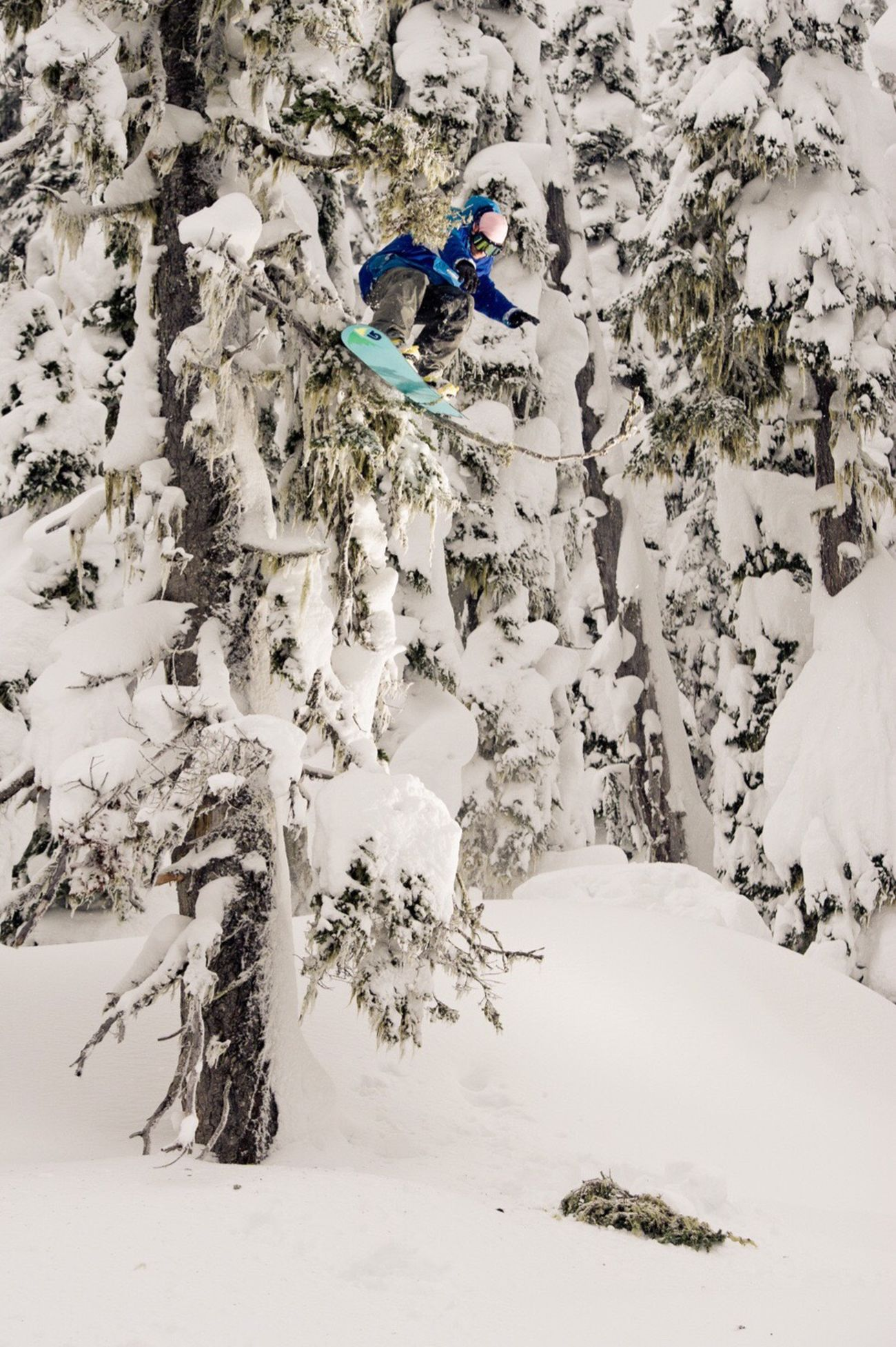 Snow Sports Snowboarding in Britishcolumbia Canada > Rider Mikey Rencz popping his way thru the trees > Winter Snow