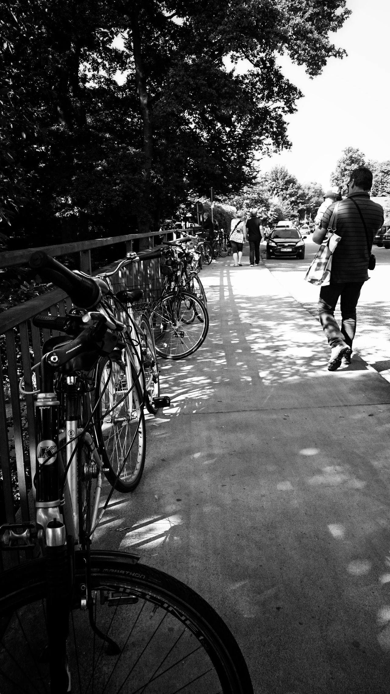 Transportation Bicycle Mode Of Transport Land Vehicle Tree Parked Outdoors Lifestyles Day Fahter Bicycle Parking Monochrome Photography Monochrome_life Street Streetphotography From My Point Of View EyeEm Best Shots