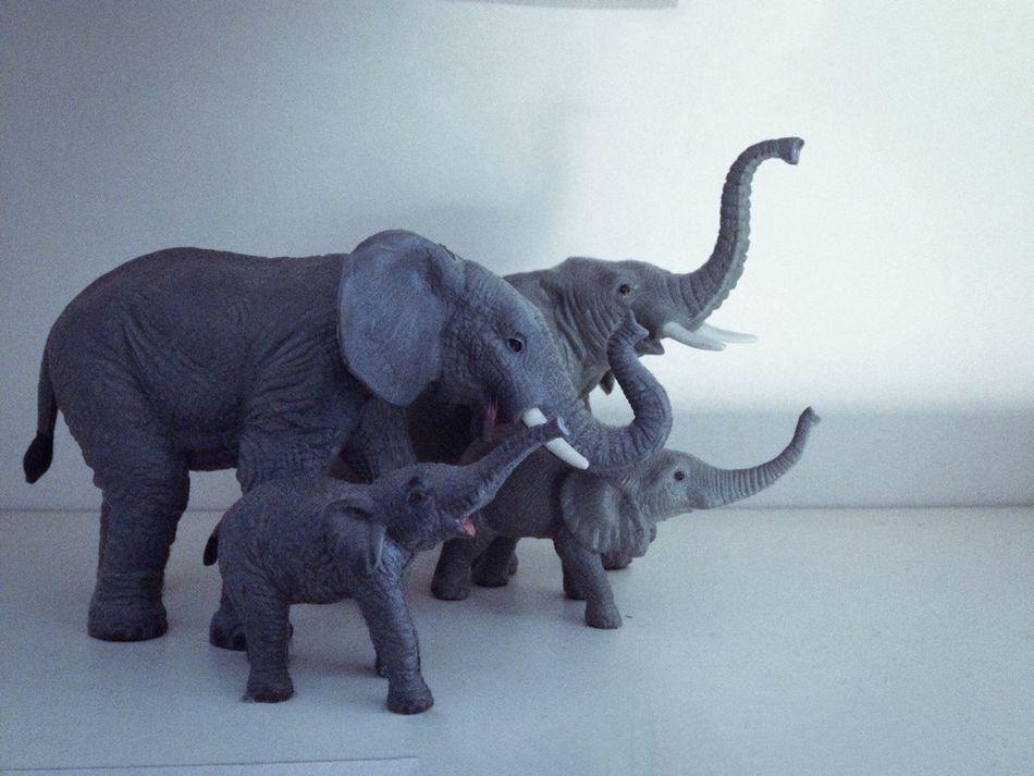Beautiful stock photos of toys, Animal Representation, Copy Space, Day, Elephant