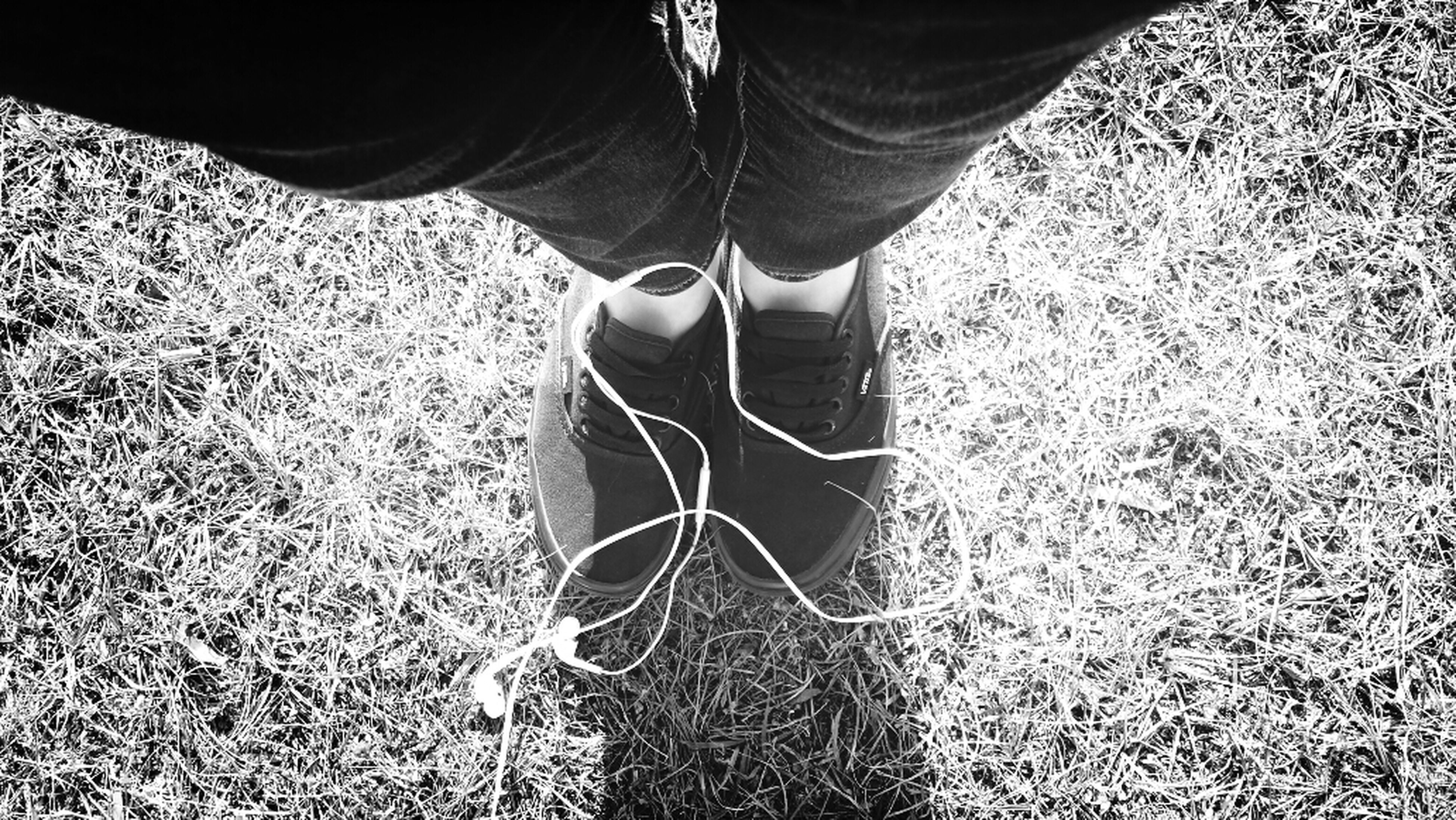 low section, person, standing, lifestyles, men, shoe, leisure activity, field, grass, human foot, jeans, casual clothing, high angle view, unrecognizable person, day, outdoors, sunlight