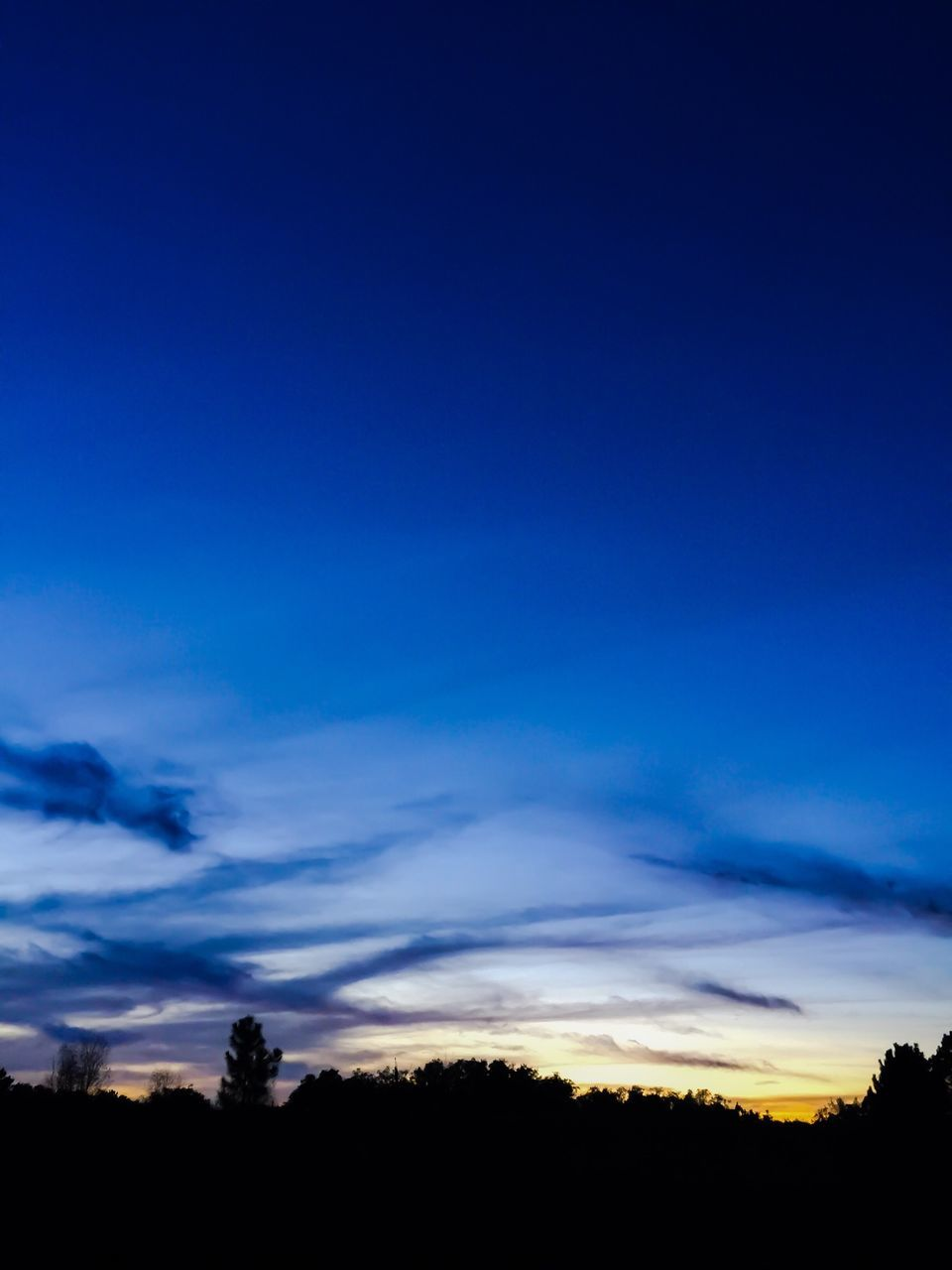 silhouette, blue, tranquil scene, tree, scenics, sunset, sky, beauty in nature, nature, tranquility, outdoors, landscape, no people, night