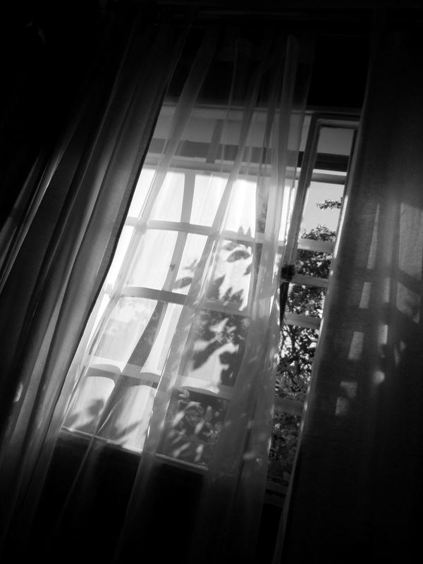 Window Indoors  No People Sunlight Movement Windy EyeEm New Here Awakening Light And Shadow Light Trough Windows Curtains