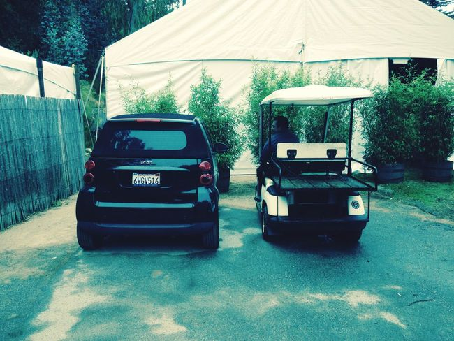 Comedy Funny Stuff Golf Cart Smart Car Big Sur, Ca. Home Comparison