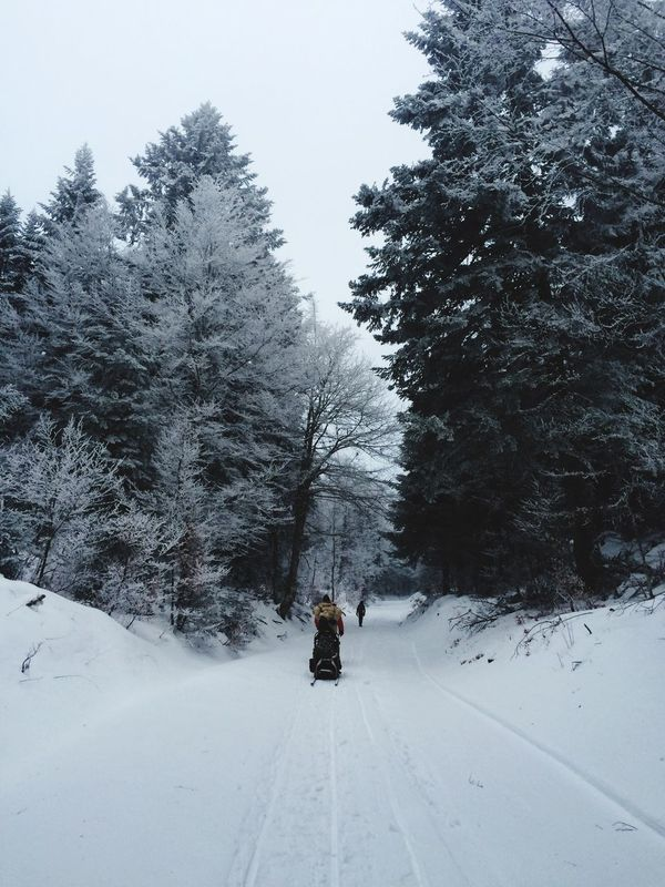 Family Snow Moutains Brouillard Cold
