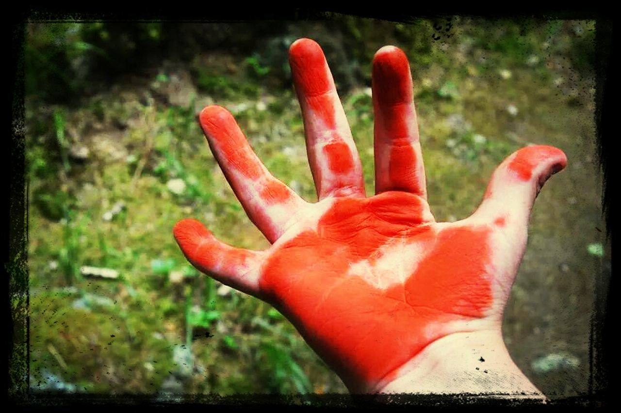 human hand, red, human body part, one person, close-up, focus on foreground, real people, outdoors, palm, day, people