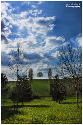 landscape in Borgo san Lorenzo by Marcello