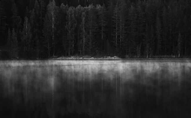 moon river Monochrome Mirrorscapes Film Noir River Lightseeker Blackandwhite Black And White Landscape Moodscapes Forest