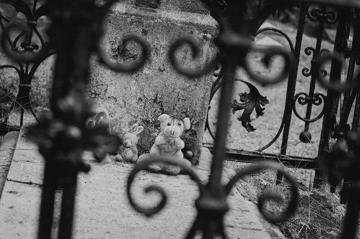 Cemetery in Borne Sulinowo Misie Cmentarz Sadness Cemetery Photography