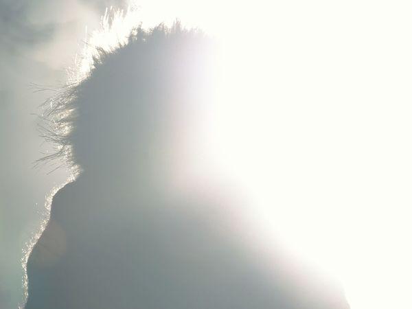 Its a bobble hat! Bobble Hat Bobble Hat  Backlit Backlight Sun Silhouette