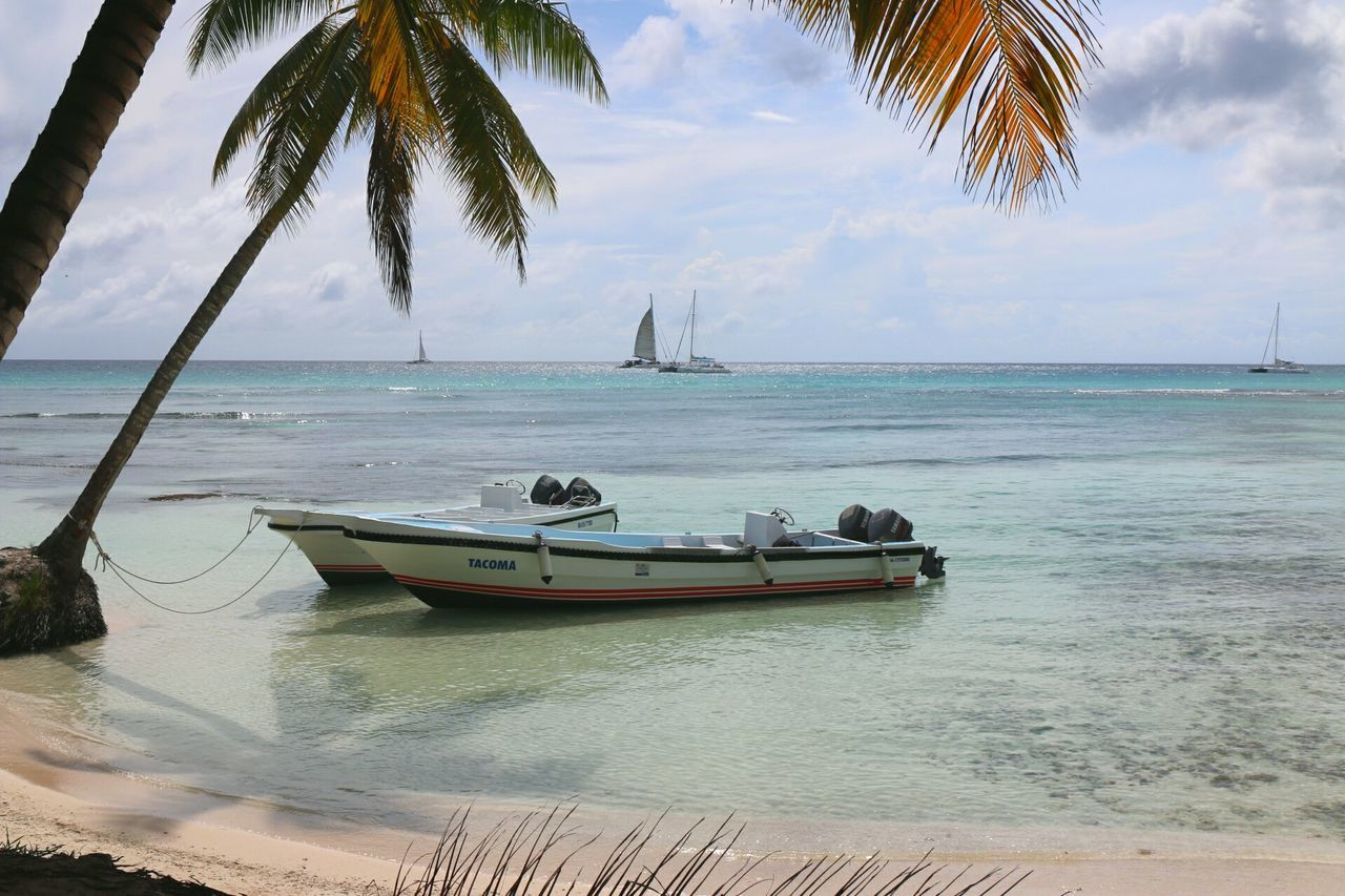 Caribbean Dominican Republic Dreamscapes & Memories Saona Island Saona Saonaisland Caribbean_beautiful_landscapes Caribbean Sea Karibik Karibik *-* Republicadominicana Feel The Journey Best Eyem 2016 Dominikanische Republik  DreamScapes Best Photo2016 Paradise!