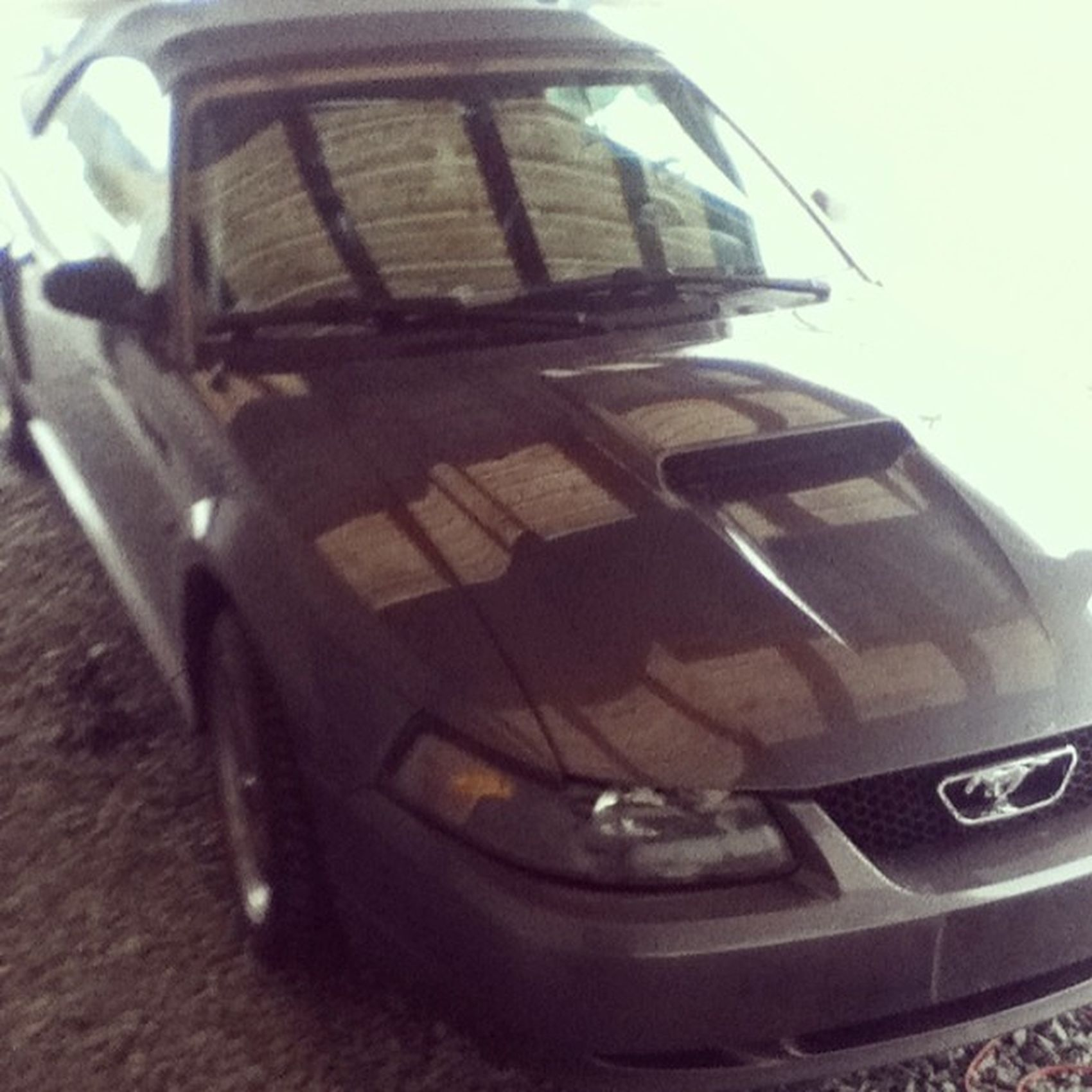 New carIwantitsobad Dadscar MustangGT Convertable sweetfast