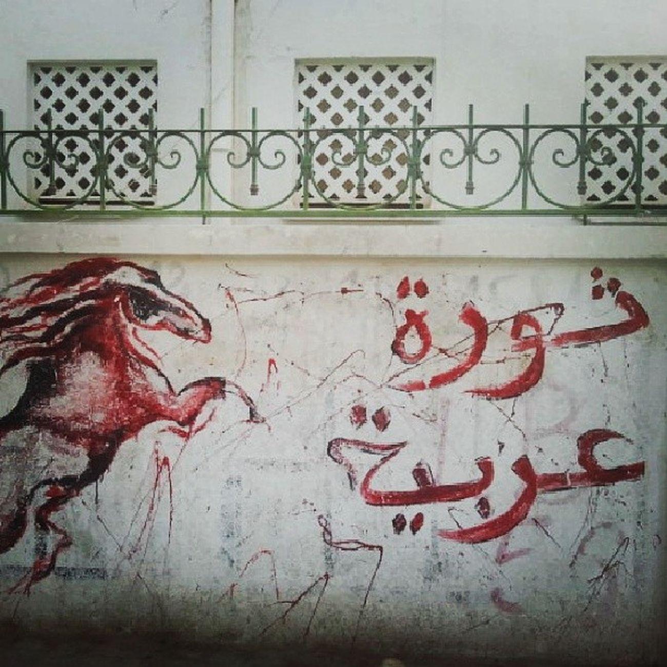 Graffeti El7amma Tunisie Tunisie ثورة غير مكتملة