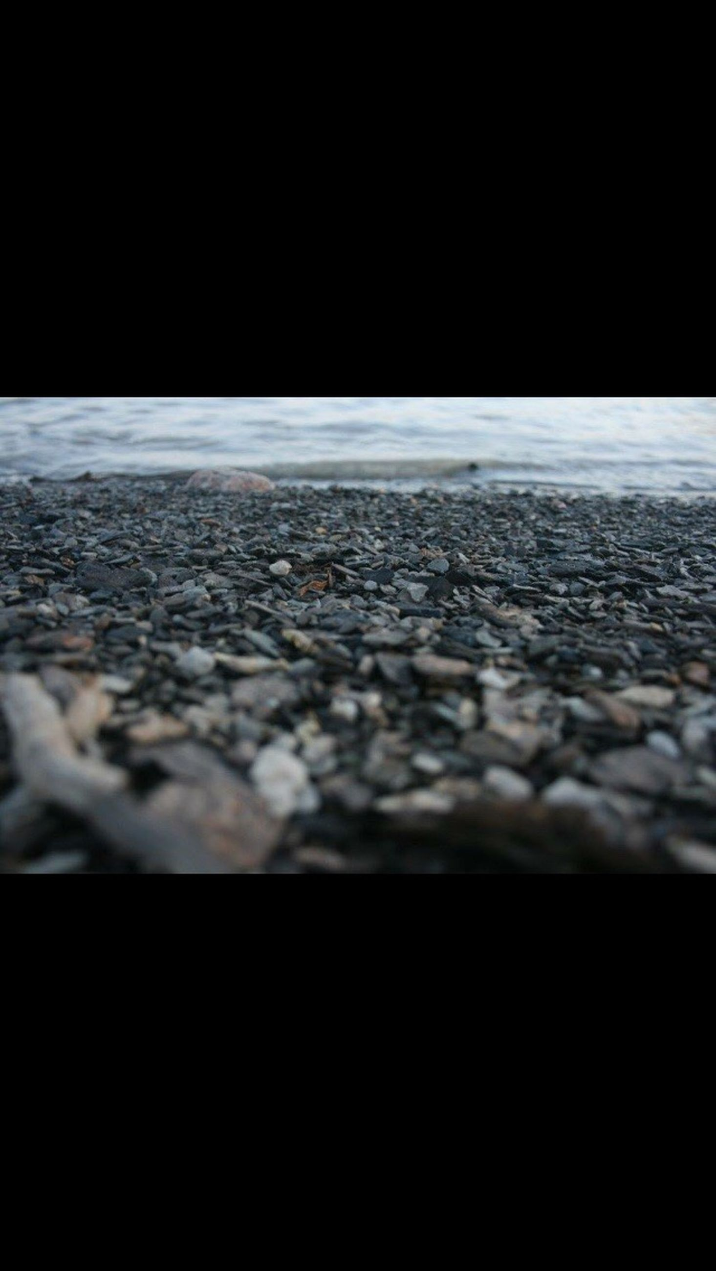 no people, textured, surface level, nature, close-up, black background, pebble, outdoors, night