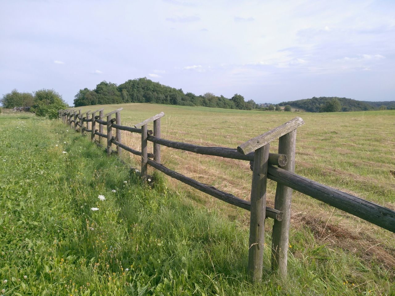 Countryside Fence Green Nature Grass Grasslands Pasture Meadowlands Countrylife Country Walks Outdoor Photography No Filter, No Edit, Just Photography Wood EyeEm Colours Of Nature GoingOut Going For A Walk Walking Around