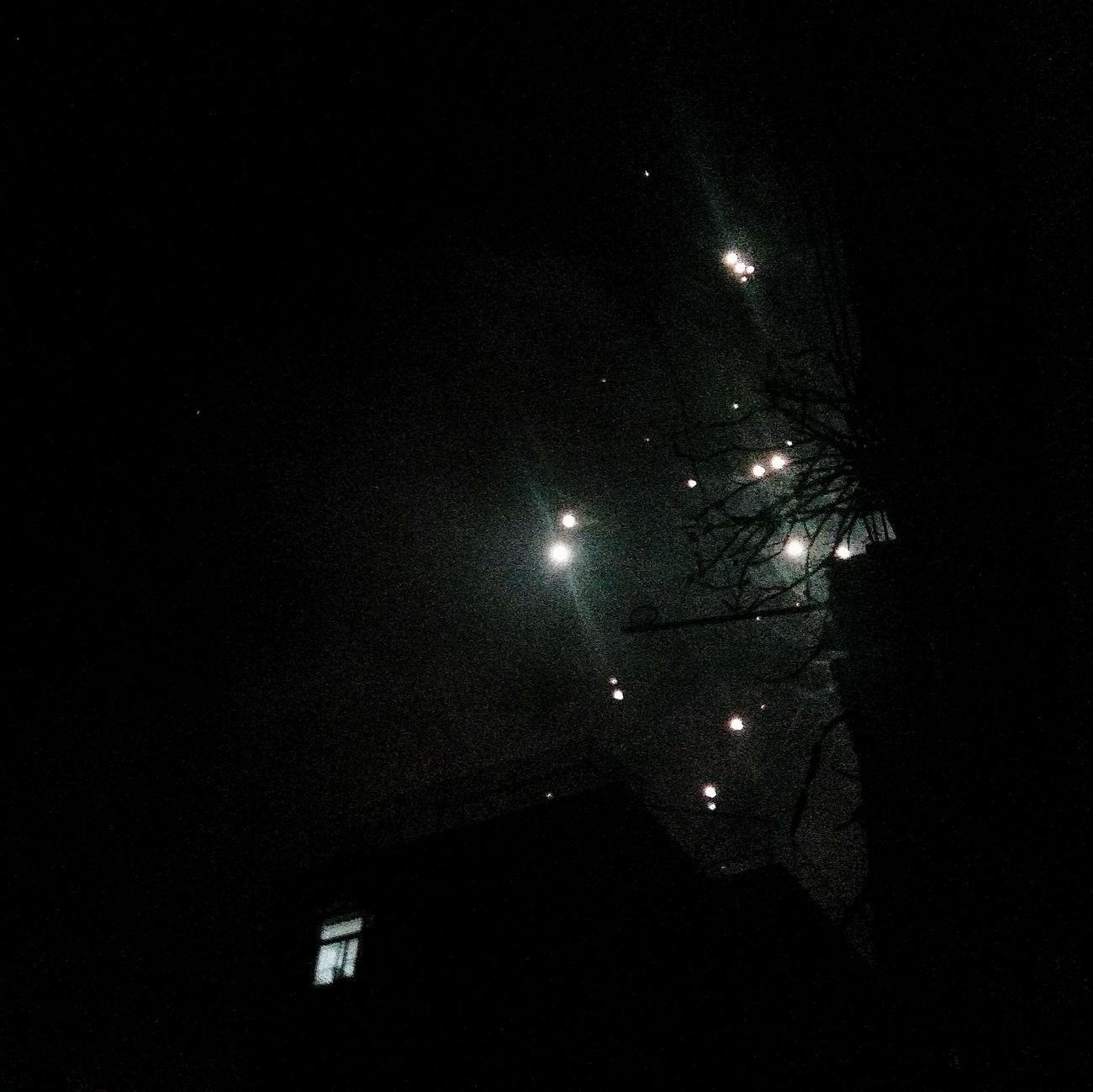 Architecture Nature City City Life Beautiful Day Night Firework Stars Plant - Zhuhai China