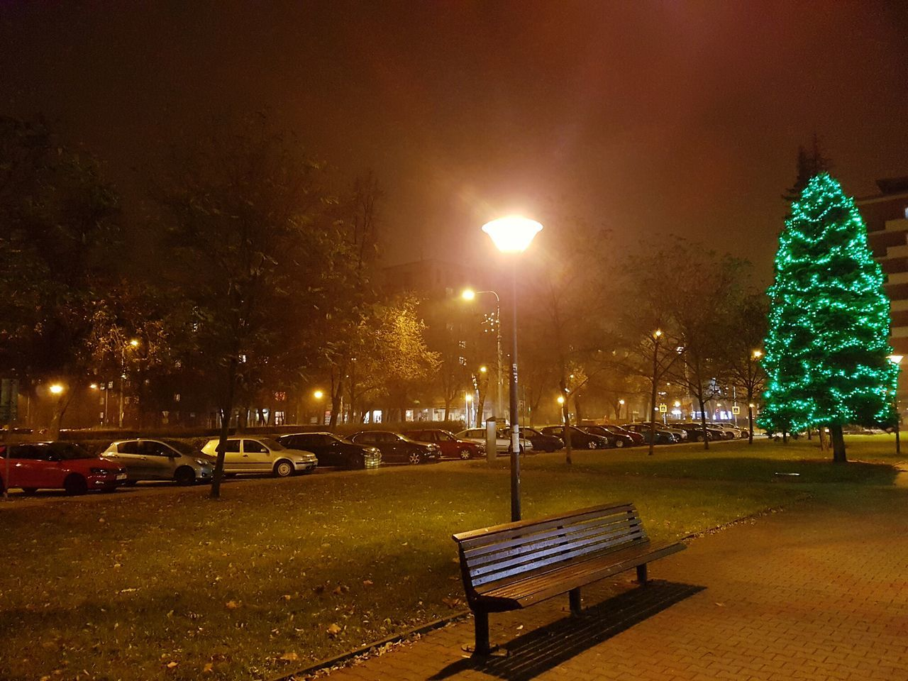 Night Illuminated Tree No People Outdoors Sky Nature Czech Republic🇨🇿 Road Car Night Lights Plaza Christmas Ornament Christmas Tree Ostrava