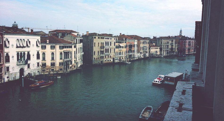Unico grande amore Venice Iuav Enjoying Life Amazing