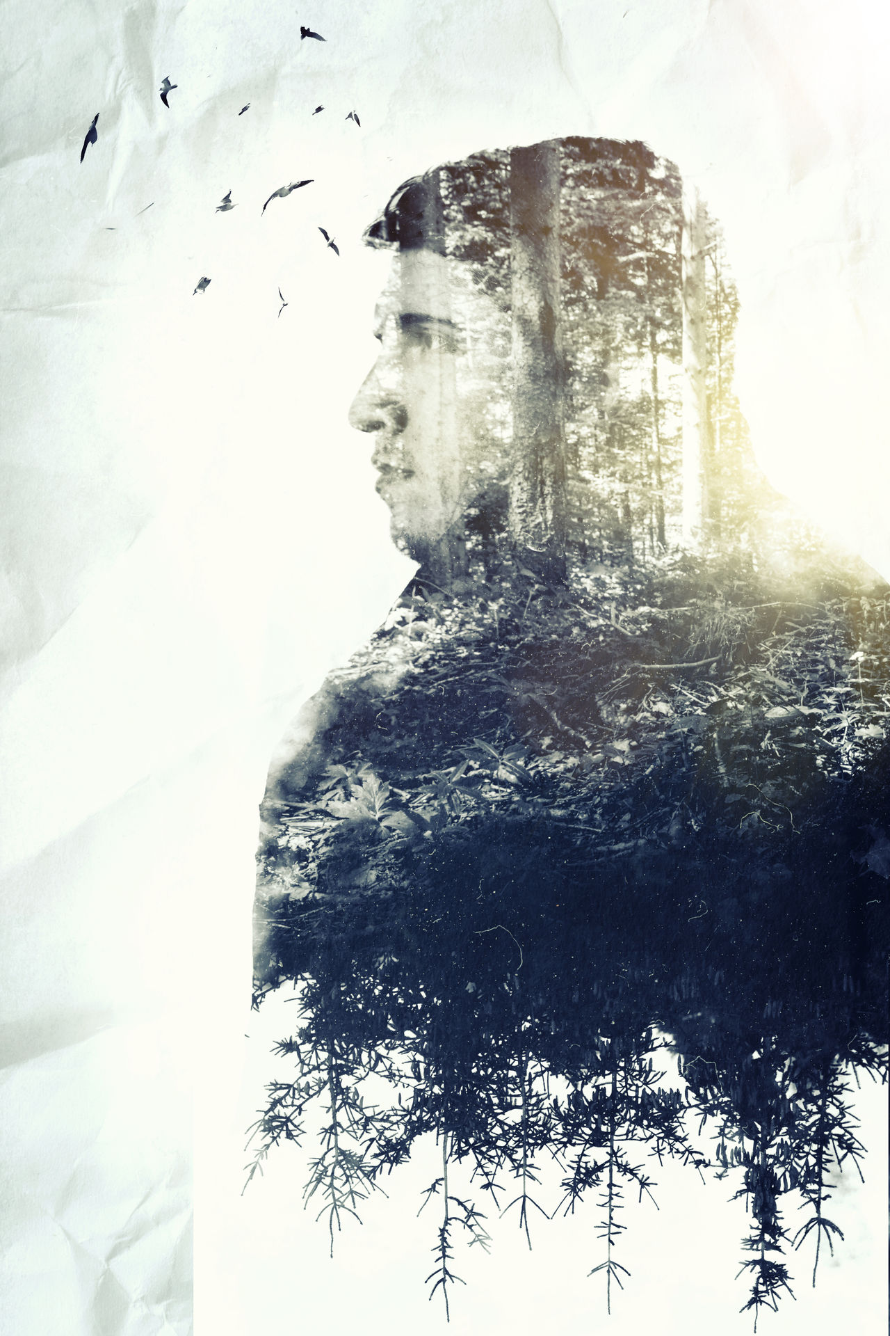 Birds Double Exposure Environment Environmental Conservation Forest Forest Photography Future Longing Love Man Nature Nature Outdoors Sideways Thoughtful Thoughts Tranquility Tree Wood