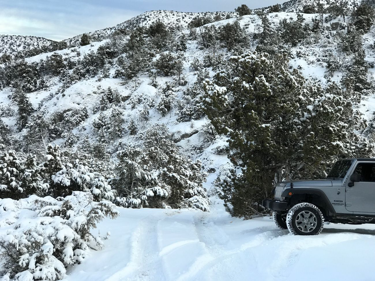 Snow Winter Cold Temperature Nature Transportation Land Vehicle Mode Of Transport Beauty In Nature Day Outdoors Tree One Person 97mf3r Wrangler Jeep Life
